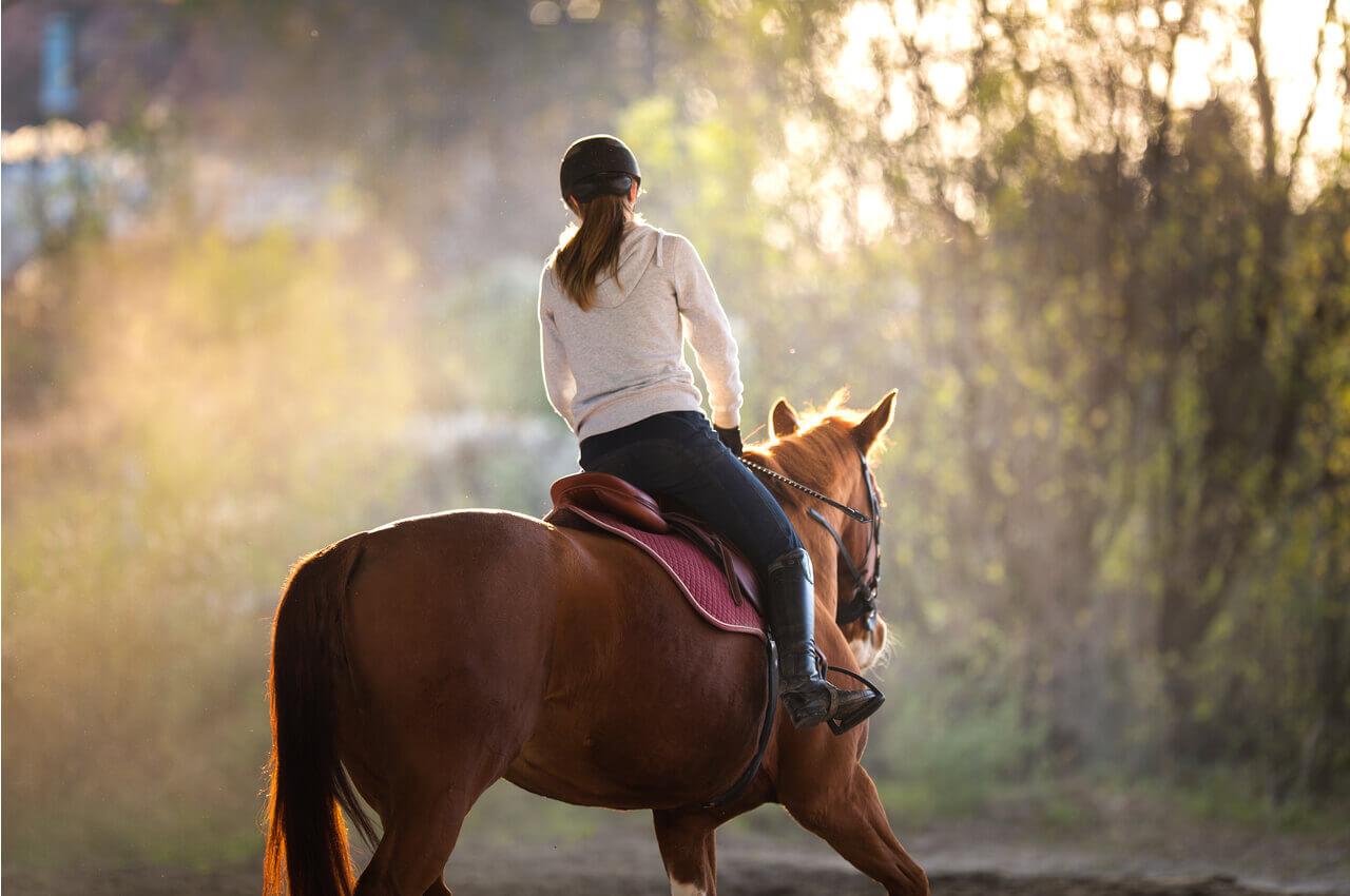 Equestrian Club of Northern Greece-benefits-AlphaDrive